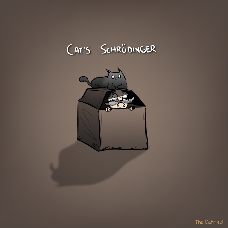 [Image: cats_schrodinger.png]