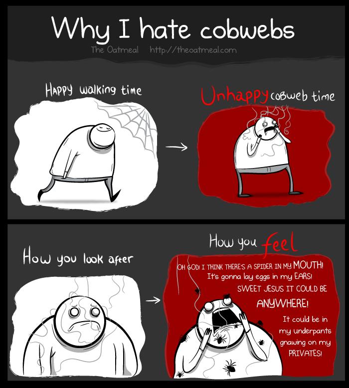 Why I hate cobwebs