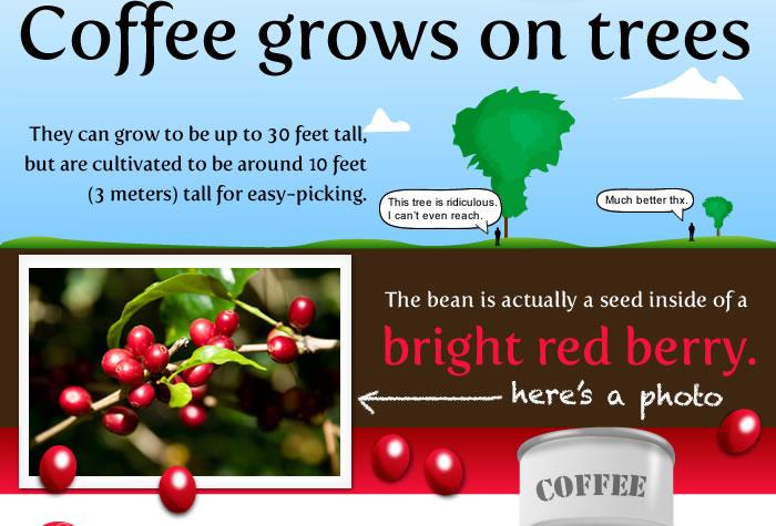 http://theoatmeal.com/img/comics/coffee/4.jpg