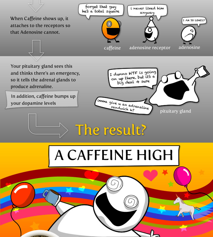 15 things worth knowing about coffee the oatmeal