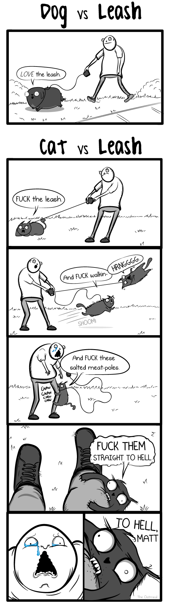 Cat Versus Leash