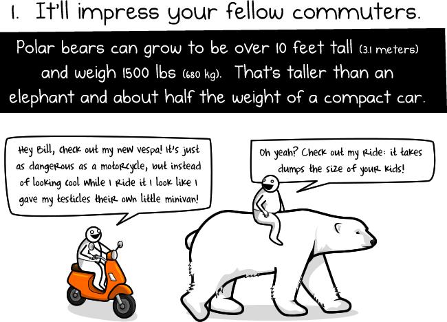 1 Sechs Gründe einen Eisbären zur Arbeit zu reiten