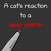 A cat's reaction to a laser pointer