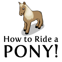 How to Ride a Pony