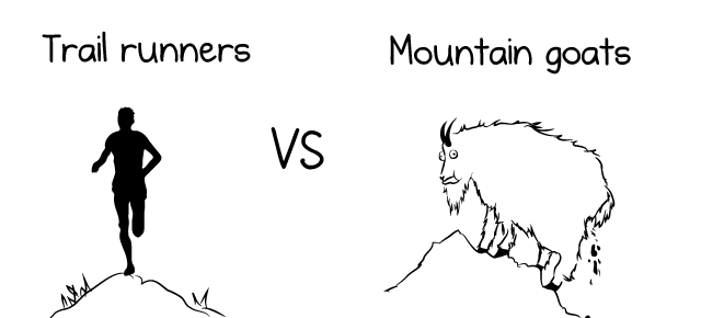 Mountain Goats, The - Coroner's Gambit