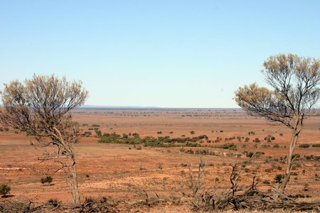 Plains And Floodout Of The Bancannia Trough On Fowlers Gap