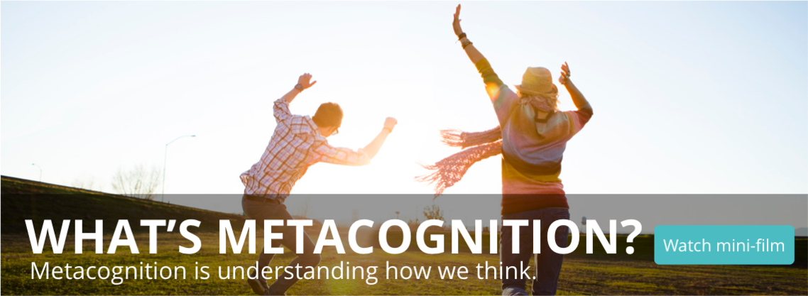 Metacognition slider