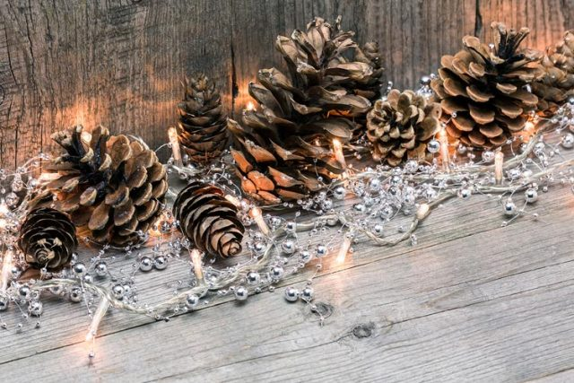 Plant Materials for Holiday Decorations