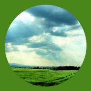 Green Fields by Brothers Four