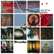 Nothing Owed by Bonobo