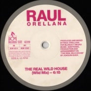The Real Wild House by Raul Orellana