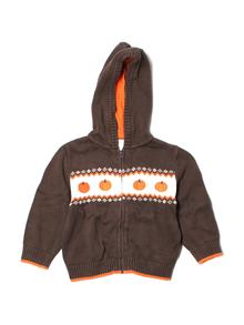 Gymboree Zip-up Hoodie 2T
