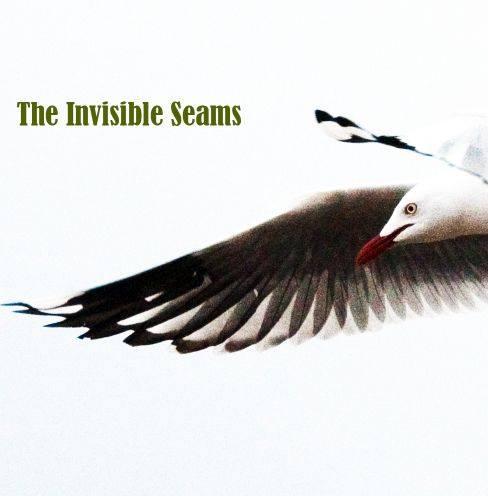 the invisible seams 11215735_10153141877551065_23585951733874192_n