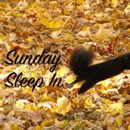 sleep-in