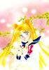 Sailorstarspb_50