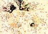 Manga_artbook_04_14