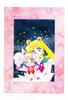 Manga_artbook_04_38