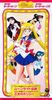 Sailor_moon_world_01