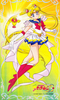 _poster__sailor_moon_banpresto_character_sheet