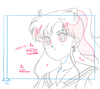 Sailor-moon-official-douga-book-48