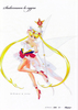 Sailor-moon-clearfile-fukano-youichi-01