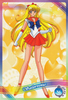 Sailor-moon-ex3-reg-06