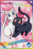 Sailor-moon-ex3-reg-11