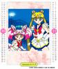 Sailor-moon-ss-schoolyear-calendar-06