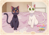 Sailor-moon-crystal-namjatown-bromide-14