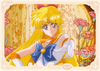 Sailor-moon-crystal-namjatown-bromide-19