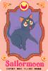 Sailor-moon-omajinai-card-06