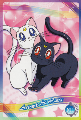 Sailor-moon-ex3-reg-11