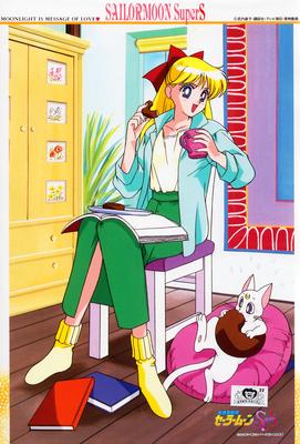 Sailor-moon-supers-minako-puzzle