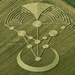 Crop Circle Photographs - Temporary Temple