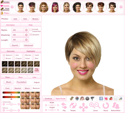 Virtual Hairstyler
