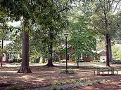 Blair Park Picnic Facilities