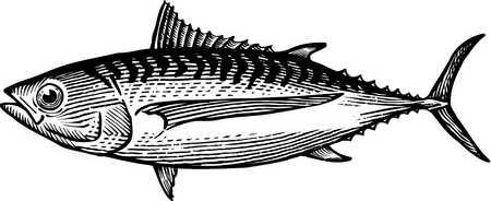 Tuna Can Clipart Black And White