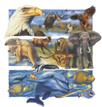 Image result for animal collage