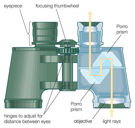 Diagram of Binocular Parts | Volvoab