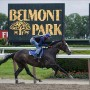 Buy Belmont Stakes Tickets and Belmont Park Tickets