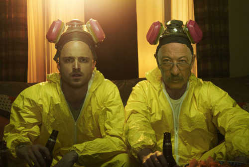 http://s3.amazonaws.com/tj_articles/breaking-bad-rosenbaum-5.jpg