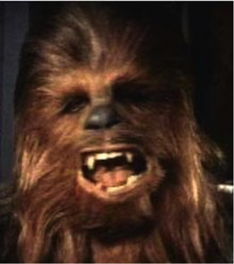 Chewy1