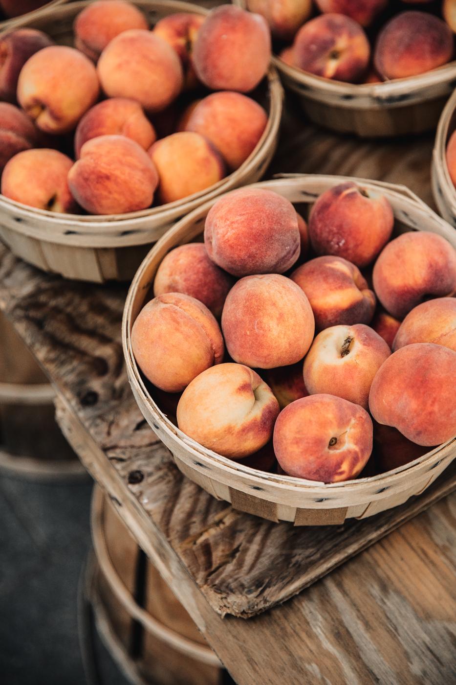 lexington kentucky, lexington farmers market, 21c lexington, 21c hotels, lockbox lexington, appalachian farmers summit