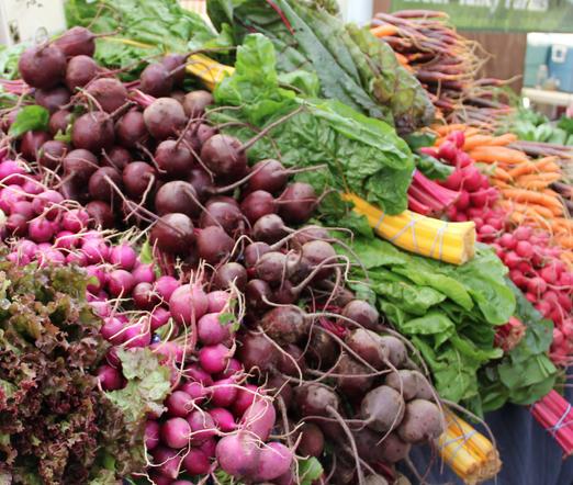 One of the Premium Farm Market Venues in Southeastern Michigan