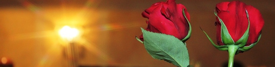 Wine_and_roses_038.jpgc