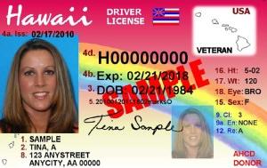 Hawaii Veterans Drivers License