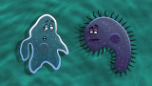 Play «A Brisk Amoeba Love Story» video