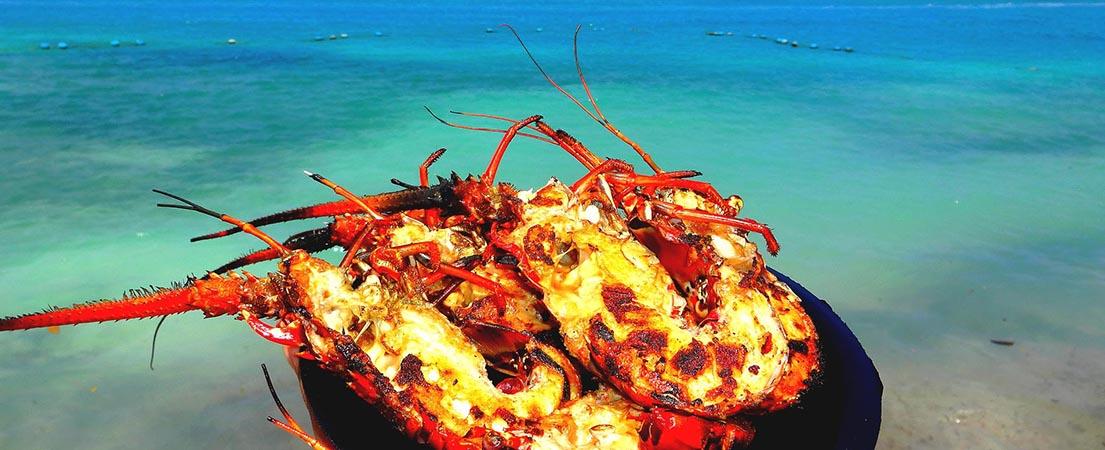 La Gastronomie Au Costa Rica Lors De Votre Voyage Sur Mesure