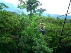 Survol de la jungle en tyrolienne