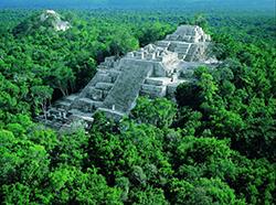 La cité maya de Calakmul